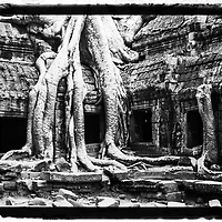 Angkor Was temple. Cambodia