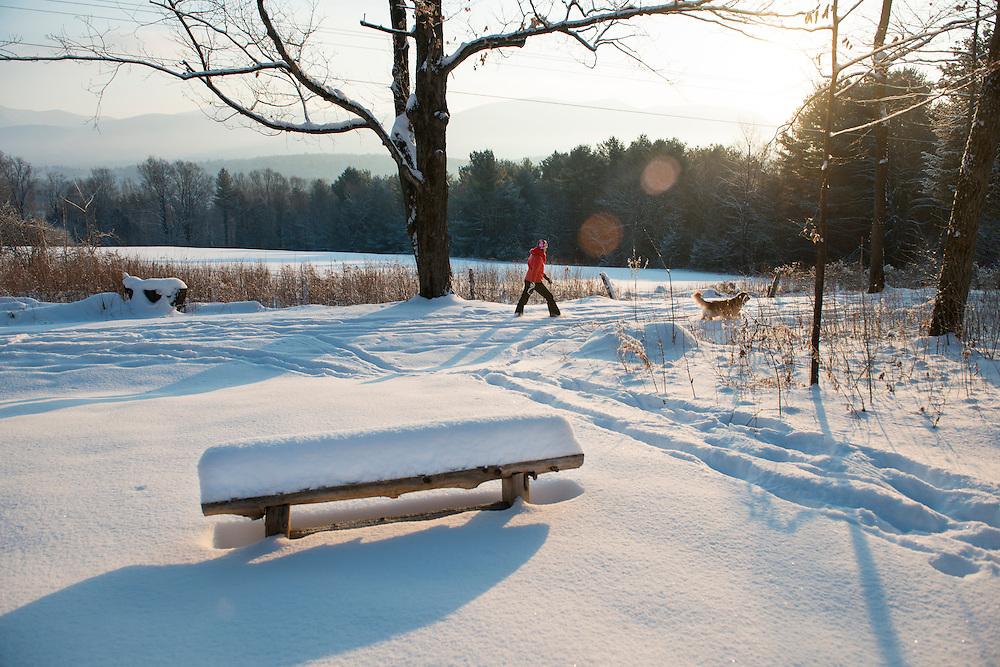 Winter morning walk in Brandon, Vermont.
