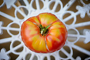 201200702 First tomato of summer.<br /> photo by Laura Mueller<br /> www.lauramuellerphotography.com