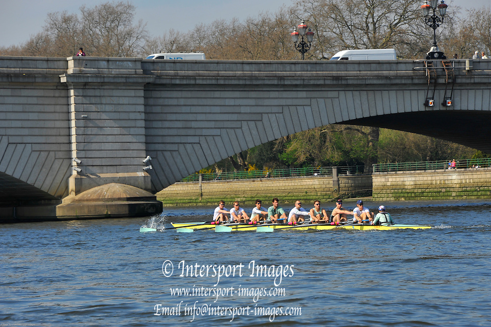 London, UK,  2014 Varsity, Annual Tideway Week. CUBC, Cambridge University Boat Club, Blue Boat,paddle towards Putney Bridge, during training outing. 09:43:41  Tuesday  01/04/2014  : [Mandatory Credit Intersport Images]<br /> CUBC. Bow. Mike THORP, 2. Luke JUCKETT, 3. Ivo DAWKINS, 4. Steve DUDEK, 5. Helge GRUETJEN, 6. Matthew JACKSON, 7. Joshua HOOPER, Stroke, Henry HOFFSTOT and cox Ian MIDDLETON