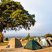 Late afternoon light hits the tents at the Simba Campsite on the rim of Ngorongoro Crater in the Ngorongoro Conservation Area, part of Tanzania's northern circuit of national parks and nature preserves.