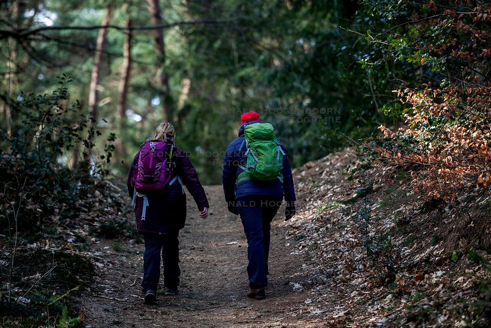 18-03-2018 NED: We hike to change diabetes, Soest<br /> Training voor de Camino 2018 op de Soesterduinen / Michelle, Wanda, lopen, bos