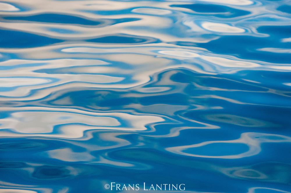 Water reflections, Antarctica