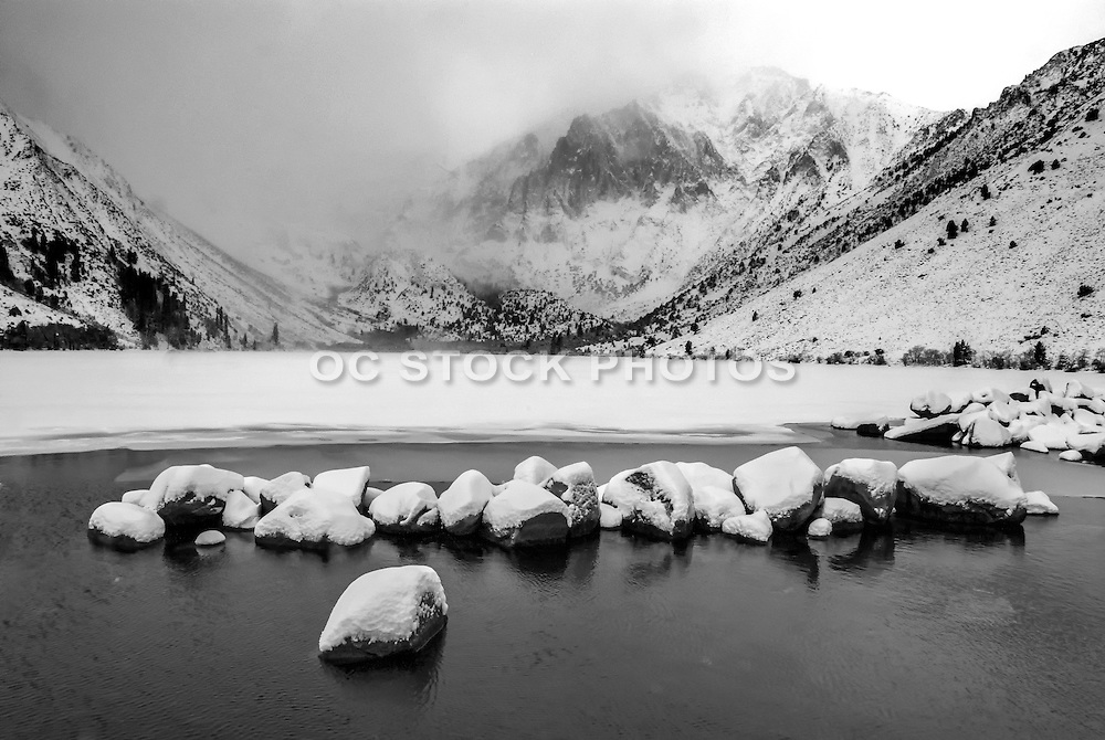 Mammoth Back Country During Winter Black and White Stock Photo