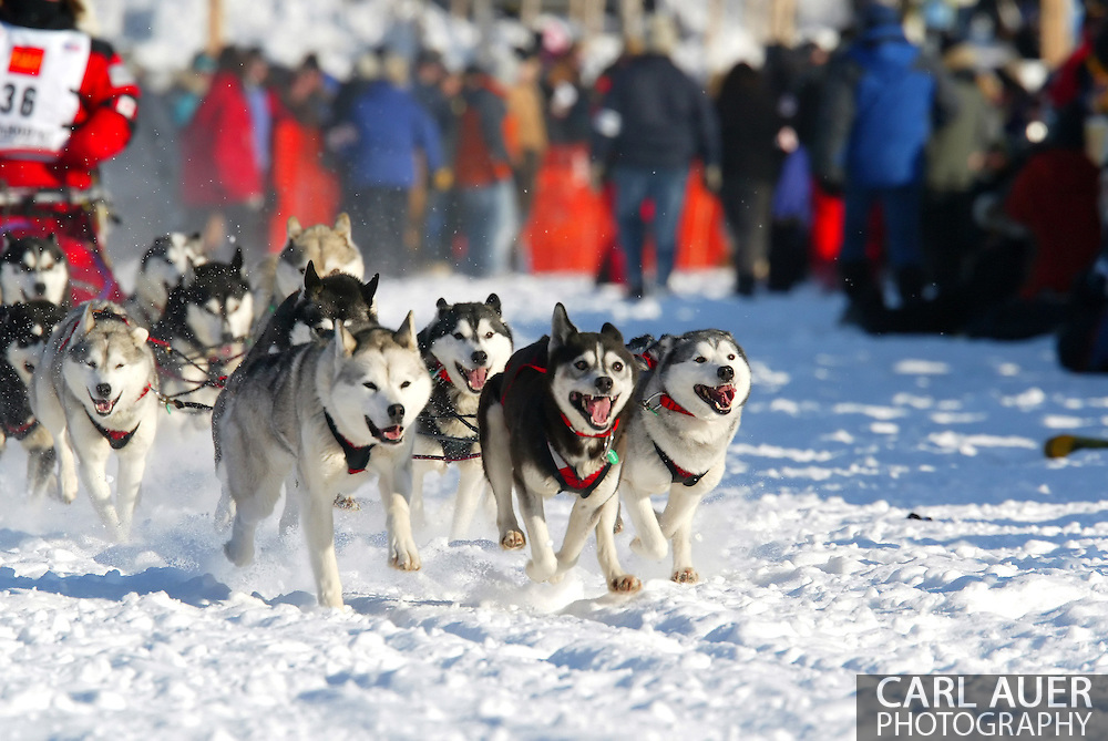 3/4/2007:  Willow, Alaska -  The team of Veteran Karen Ramstead of Perryvale, Alberta Canada heads out in the 35th Iditarod Sled Dog Race