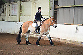 01 - 06th March - Unaffiliated Dressage
