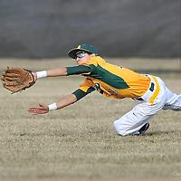 3.31.2014 Firelands at Amherst Varsity Baseball