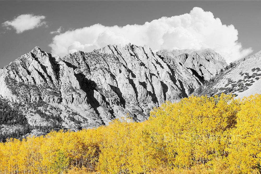 An image of fall colors in the Sierra mountains above North Lake, CA.