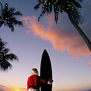 Surf Santa on the shore under a palm-tree with his board.