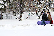 Atmosphere at Prospect Park after the third major snowstorm of the winter season covered the NYC area with up to 20 inches on  February 26, 2010 in Brooklyn, NY.