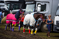 © London News Pictures. 12/05/2016. Windsor, UK. Horses wearing multi-coloured outfits make their way through stables on the first day of the 2016 Royal Windsor Horse Show, held in the grounds of Windsor Castle in Berkshire, England. The opening day of the event was cancelled due to heavy rain and waterlogged grounds. This years event is part of HRH Queen Elizabeth II's 90th birthday celebrations.  Photo credit: Ben Cawthra/LNP