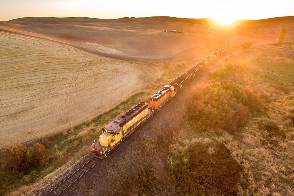 Train passing wheat fields
