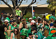 A young boy climbs into a tree to see over the crowds at the Dallas St. Patrick's Parade on Greenville Avenue, Saturday, March 16, 2013. (Cooper Neill/The Dallas Morning News)