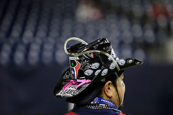A Houston Texans fan watches from the sidelines before an NFL football game against the Cincinnati Bengals Saturday, Dec. 24, 2016, in Houston. (AP Photo/Sam Craft)