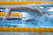 Maxime Grousset (FRA) competes on Men's 100 m Freestyle during the Swimming European Championships Glasgow 2018, at Tollcross International Swimming Centre, in Glasgow, Great Britain, Day 3, on August 4, 2018 - Photo Stephane Kempinaire / KMSP / ProSportsImages / DPPI