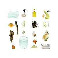 Sea glass bottles, Green Crab (Carcinus maenas), driftwood, feather, Common Slipper Shell&nbsp;(Crepidula fornicata) with a strand of Rockweed (Fucus distichus) attached, bone, Dog Whelk (Nucella lapillus), Waved Whelk (Buccinum undatum), pine cone, plastic confetti popper, Common Periwinkle&nbsp;(Littorina littorea), and beach china.        <br />