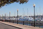 The Harbor at Marina Del Rey in Los Angeles
