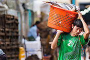 13 JUNE 2013 - YANGON, MYANMAR:  A worker spits betel while he carries a basket of fresh fish to a truck in the Annawa Fish Market. The Annawa Fish Market in Yangon is one of the largest fish markets in Myanmar. It serves as both a wholesale and retail market and serves both exporters and domestic customers. With thousands of miles of riverine waterways and ocean coastline Myanmar has a large seafood and fishing industry.    PHOTO BY JACK KURTZ