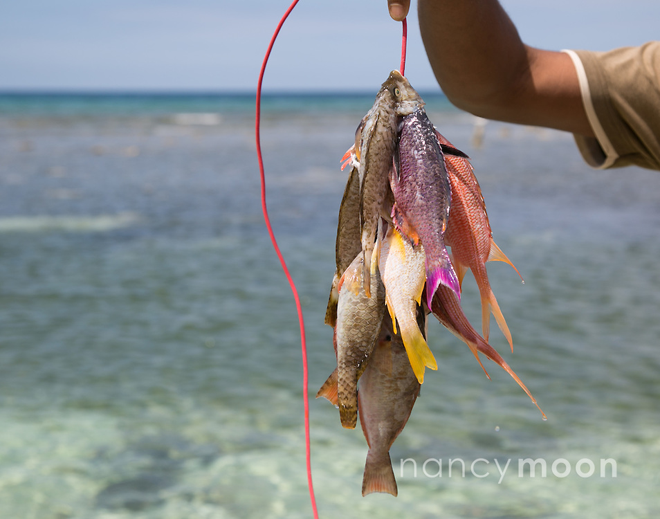 Jamaica fisherman with his daily catch.<br /> <br /> For all details about sizes, paper and pricing starting at $85, click &quot;Add to Cart&quot; below.