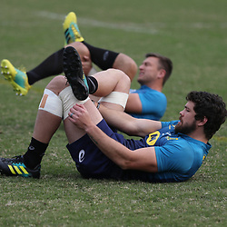 DURBAN, SOUTH AFRICA - AUGUST 13: Warren Whiteley during the South African national rugby team training session at  Jonsson Kings Park on August 13, 2018 in Durban, South Africa. (Photo by Steve Haag/Gallo Images)