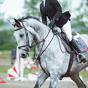 1.0m HORSE SPORT GP jumper sand