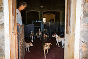 EVA RUPPEL opens her front door on her rural property near Kandy, Sri Lanka, on Wednesday, February 21, 2018. Ruppel does not cage the approximate 170 dogs she has rescued, allowing them freedom to interact in small packs in multiple pens throughout her property and inside her home. Ruppel created Tikiri Trust, with the financial assistance of her father, to rescue and rehome Sri Lanka's street dogs.<br /> <br /> <br /> It is impossible to visit Sri Lanka without seeing street dogs in nearly every public space, near hotels, guest houses and restaurants, schools, offices, markets, hospitals, police stations, bus terminals, railway stations, temples, etc. These dogs do not have their own homes, but they are usually highly tolerated and are typically fed collectively by people in a particular area.<br /> <br /> According to the NGO, Kandy Association for Community Protection through Animal Welfare (KACPAW), 100 unsterilized dogs will give rise to 3,000 dogs in one year. The Sri Lankan government, as well as several NGOs, work to spay/neuter animals, but there is need to educate the public and maintain funds to stay on top of their efforts.<br /> <br /> Eva Ruppel left Germany for a three-month visit to Sri Lanka, which included time in a Buddhist meditation retreat, and she remains in this island nation 37 years later.<br /> <br /> While married, Ruppel&rsquo;s husband asked that the couple keep only three dogs in their home at any one time, and she respected his wishes. This 60-something year old lost her husband to a ruptured brain blood vessel in 1995 when he was 51 years old, after nine years of marriage. After his death, she began rescuing more and more animals and she now lives with 170 dogs, plus a dozen or so cats.<br /> <br /> With the support of her father, she started Tikiri Trust. Her father passed away in 2011, and he left her an inheritance, which she continues to use to support her cause. <br /> <br /> Ruppel, who is fluent in German, English and Sinhala, said that she has found homes for &ldquo;hundreds, if not thousands&rdquo; of dogs. She