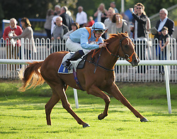 Kreb's Cycle ridden by Gary Mahon wins the 7.10 The Osbaston Novice Stakes - Mandatory by-line: Jack Phillips/JMP - 21/06/2016 - HORSE RACING - Leicester Racecourse - Leicester, England - Leicester Racing