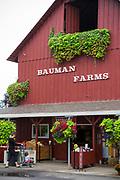 F&ouml;rs&auml;ljning hos Bauman Farms, Gervais, Oregon, USA<br /> Foto: Christina Sj&ouml;gren