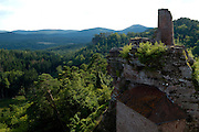 Naturpark Pfälzerwald..Dahn..Burgruine Altdahn..