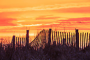 Sand fence at sunrise along Kitty Hawk Beach on the Outer Banks.