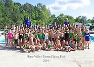 HVF Swim Team 2016