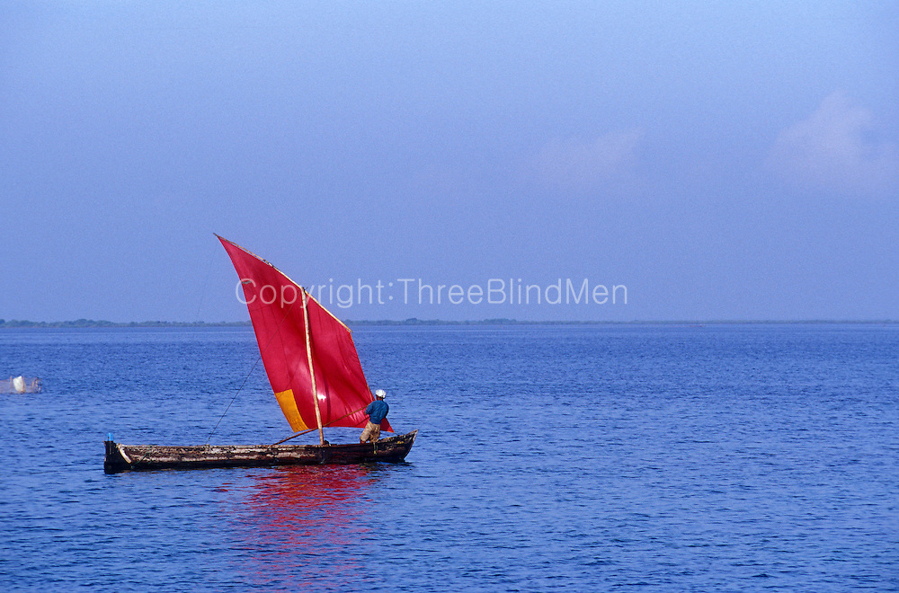Fishing boat on the lagoon between Kayts and Punkuditivu islands, Jaffna Peninsula. Morning. from causeway..January 2004