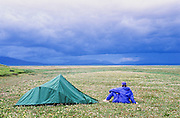 Alaska, Arctic National Wildlife refuge, ANWR. A man alone, sitting next his tent surrounded by  wildflowers.