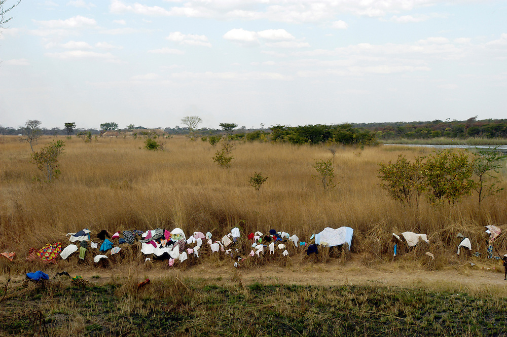 Laundry laid out to dry on grasslands that border a river in the eastern province of Moxico..Moxico Province, Angola. 23/07/2009..Photo © J.B. Rusell