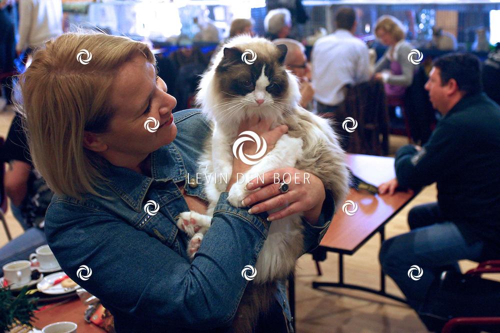 KERKDRIEL - In de theaterzaal van sportcomplex De Kreek was een Ragdoll Kitten dag georganiseerd. FOTO LEVIN DEN BOER / PERSFOTO.NU