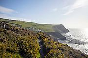 BORTH, WALES, UK 16TH MARCH 2020 - Ceredigion coastal footpath during early spring season, Borth, Wales, UK.