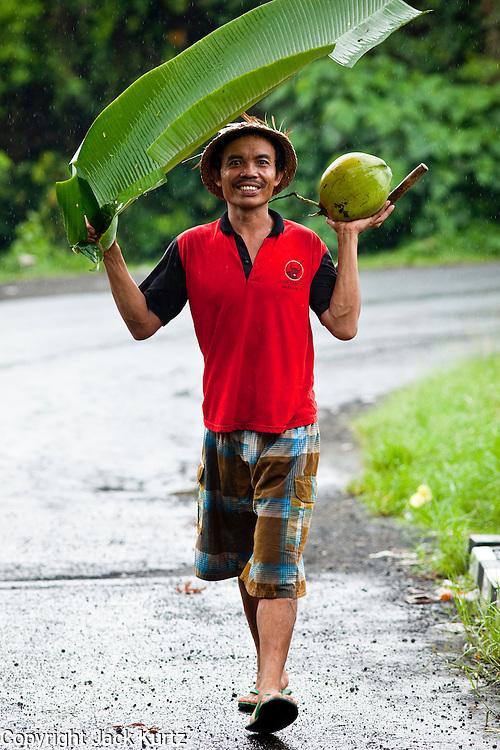Apr. 23 - UBUD, BALI, INDONESIA:    A man uses a banana leaf as an umbrella during a rain storm in Ubud, Bali. Photo by Jack Kurtz/ZUMA Press.
