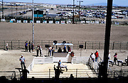 domestic farm animal judging state fair Rawlins Wyoming USA