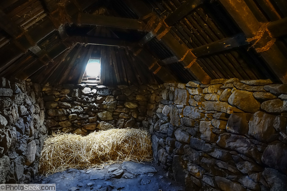 """The byre or cowshed in the 1880 Arnol Blackhouse, in Arnol village, Isle of Lewis, Outer Hebrides, Scotland, UK, Europe. Built around 1880, Arnol Blackhouse is a fully furnished traditional Lewis thatched dwelling, which sheltered a family and its animals under the same chimneyless roof. Warmed by a peat fire in a central open hearth with the smoke filtering out through the thatched straw roof, this blackhouse was home to a Hebridean crofting family and their animals, until they moved out in 1966. Today Arnol Blackhouse is insightfully preserved like the family left it. Evolving health regulations in the early 1900s demanded that livestock be housed separately, so """"whitehouses"""" were built with several chimneys, single-thickness walls cemented with lime mortar, wallpaper, lino floors, and separate barn and byre (cowshed). Across the street from Arnol Blackhouse you can visit a furnished 1920s whitehouse. These new crofthouses were so different and bright inside that they were nicknamed """"whitehouses,"""" which led to the nickname """"blackhouses"""" for the older antiquated structures."""