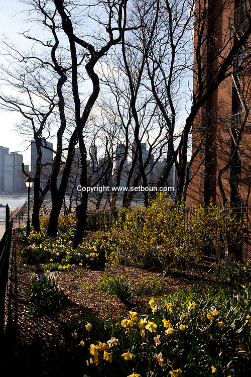 New York.  Brooklyn Height promenade with a view on lower Manhattan skyline  New York  Usa /  Manhattan dowtown e vue depuis la promenade de Brooklyn Heights New York  Usa