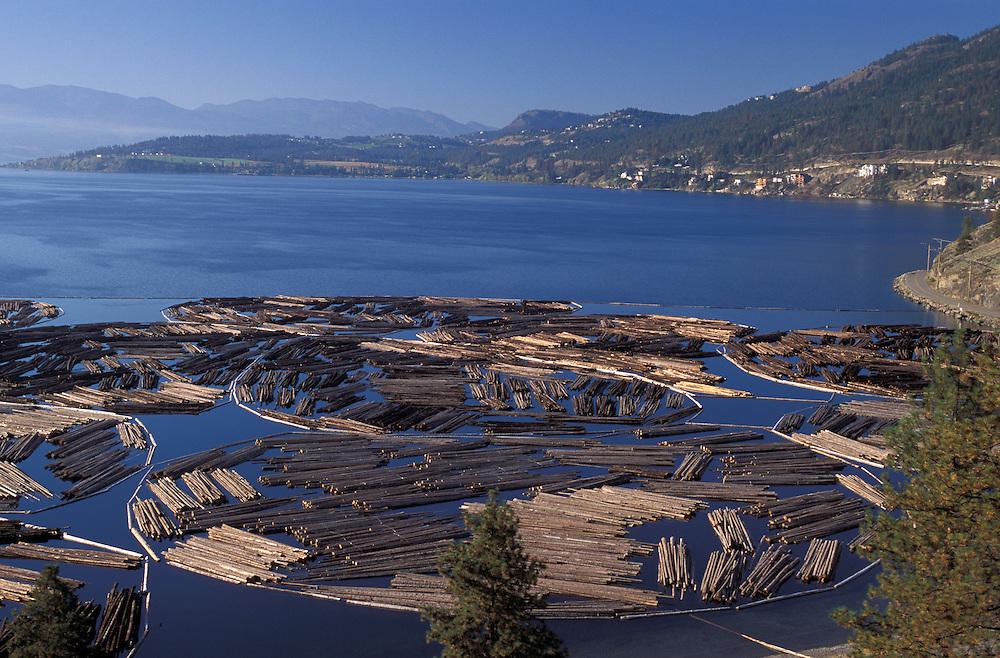Logs on Okanagan Lake near Kelowna, Okanagan Valley, British Columbia, Canada