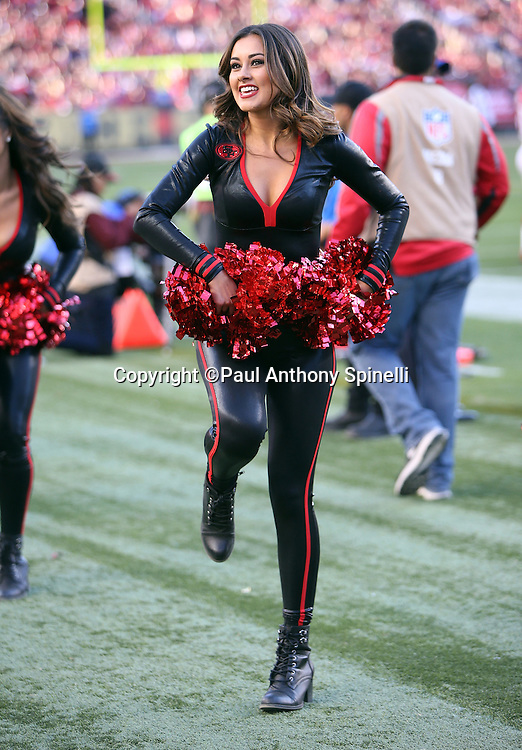 A San Francisco 49ers cheerleaders does a sideline dance routine during the 2015 week 12 regular season NFL football game against the Arizona Cardinals on Sunday, Nov. 29, 2015 in Santa Clara, Calif. The Cardinals won the game 19-13. (©Paul Anthony Spinelli)