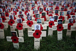 A sea of crosses dedicated to the casualties of Afghanistan at the Field of Remembrance which opened at Westminster Abbey, Thursday, November 10th 2011.  Photo by: Stephen Lock / i-Images