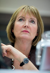 "© under license to London News Pictures. LONDON, UK. 25/02/14 Harriet Harman has said she ""regrets"" that a civil liberties group she used to work for had links to pro-paedophile campaigners in the 1970s and 1980s. FILE PICTURE DATED Brighton, UK. Harriet Harman at the Labour Party National Womens Conference in Brighton  a day ahead of the start of the Labour Party COnference in Brighton. Photo credit: Ben Cawthra/LNP"
