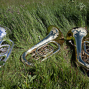 Horn resting after the concert in the grass.<br /> A REQUIEM FOR THE FOGHORN, PERFORMED BY SEVENTY FIVE BRASS PLAYERS, A FOGHORN AND AN ARMADA OF SHIPS<br /> A project by Danish artist, Lise Autogena, in collaboration with Joshua Portway and composer Orlando Gough. Ships horns from an armada of vessels off-shore, seventy five brass players on-shore and the Souter Lighthouse Foghorn  performed a Foghorn Requiem, an ambitious musical performance to mark the disappearance of the sound of the foghorn from the UK's coastal landscape.<br /> Conducted and controlled from a distance, ships at sea sounded their horns to a musical score, that will took into account landscape and the physical distance of sound. The performance took place by Souter Light House by South Shields, UK with 8-10.000 spectators and more than 50 ships off-shore.