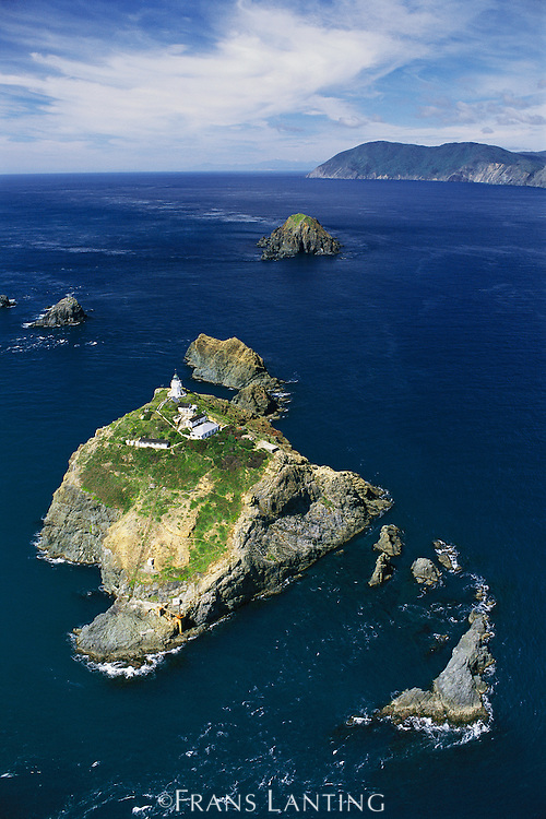 North Brother Island (aerial), New Zealand