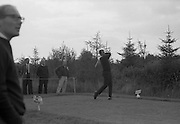 Hugh Boyle plays his 2nd shot down the fairway at the Irish Dunlop £1,000 Tournament at Tramore Golf Club, Co. Waterford on the 19th August 1967.