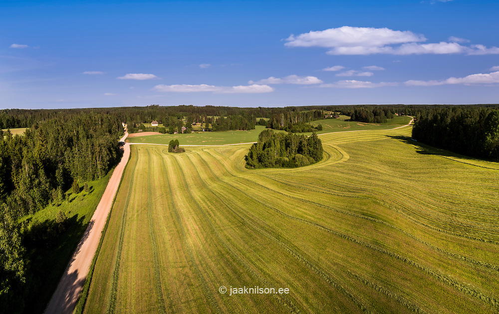 Aerial hilly rural landscape in Võru County, Estonia. Green pasture, forest, countryside.