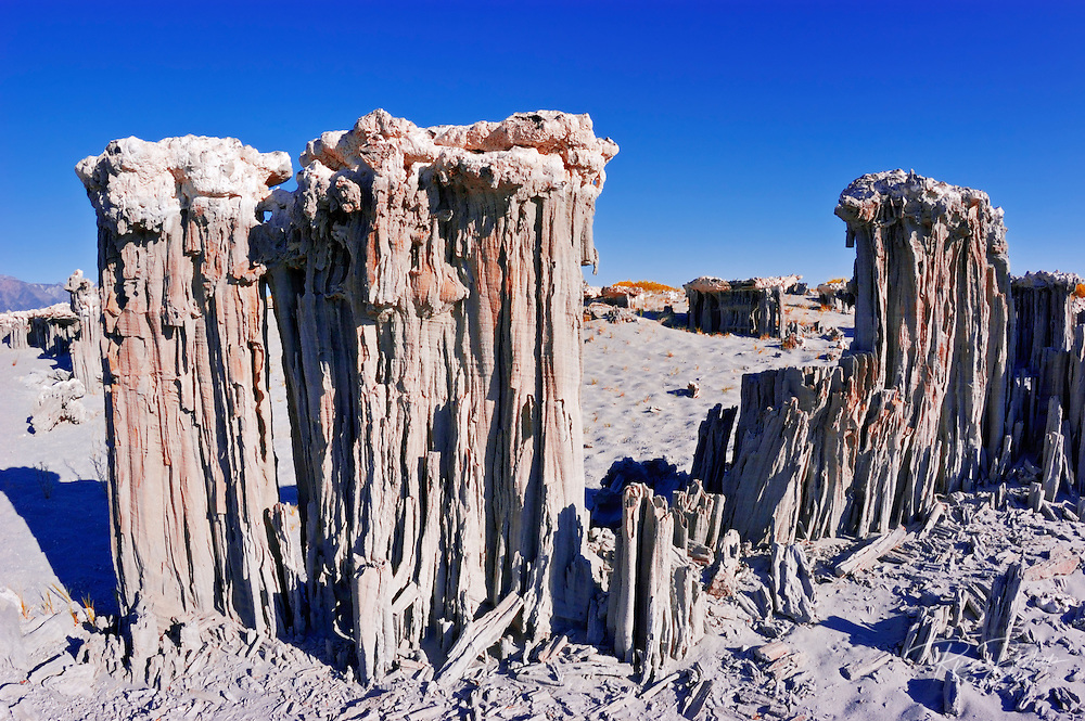 Delicate sand tufas at the south shore of Mono Lake, Mono Basin National Scenic Area, California