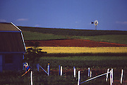 Amish garden, farm and windmill, Lancaster, PA